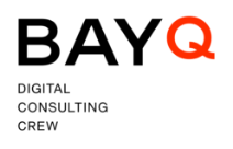 BAY Q Logo RGB